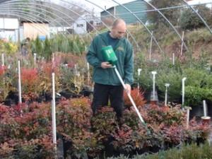Fertilizer applicator fertilizing plants